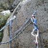Mussyhook™ anchors.