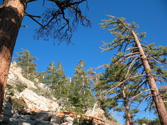 Rock Climbing Photo: Blue skies, green trees and lots of boulders, Tram...