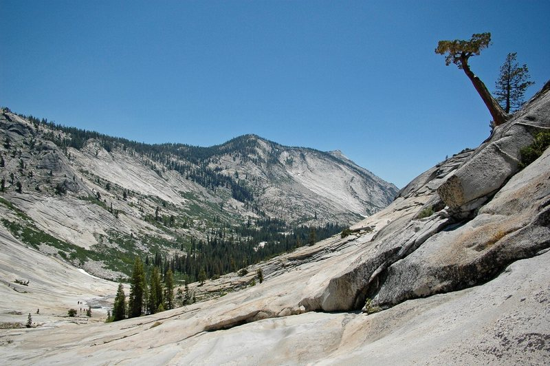 Rock Climbing Photo: Tenaya Canyon