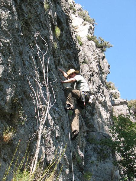 Rock Climbing Photo: Perin Blanchard starting up Sex Farm.