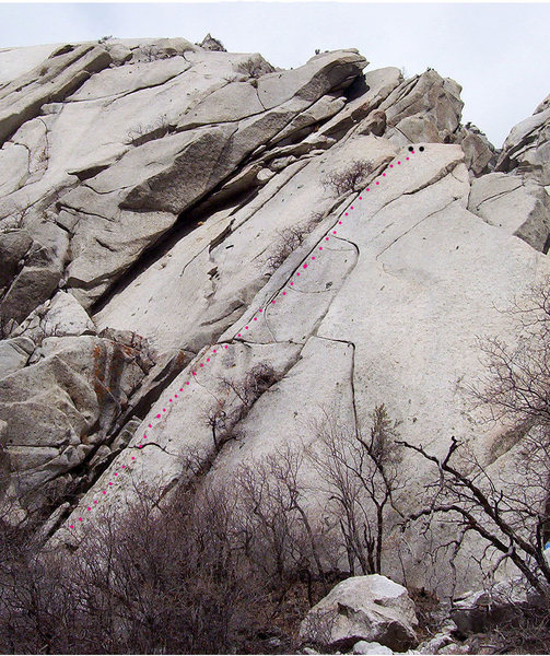 Rock Climbing Photo: Zesty