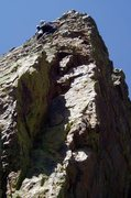 Rock Climbing Photo: Loan Shark - On the knobby upper face.