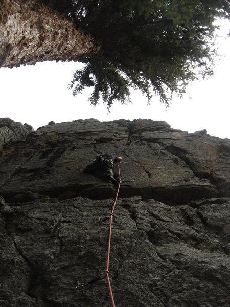 Rock Climbing Photo: Climbing The Apprentice.