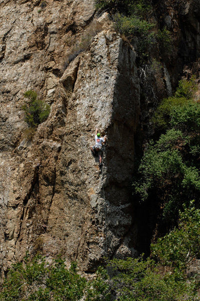 Rob Chaney climbs Economique, at Wheeler Gorge.