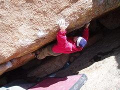 Rock Climbing Photo: Climbing Analog, Vedauwoo,WY (2008)