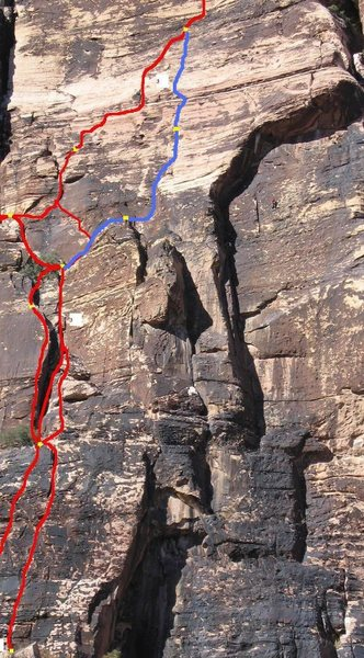Rock Climbing Photo: Red are variations of Birdland.  Blue is Tinkerbel...