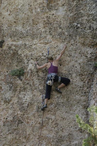 Rock Climbing Photo: Sasha, chuggin' through a sea of deep pockets.