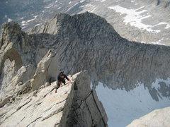 Rock Climbing Photo: Duke on the North Ridge.