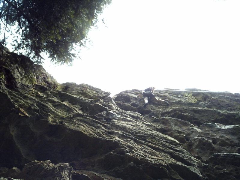 Rock Climbing Photo: Well done!!! Julie Mearckle enjoys the steep stuff...