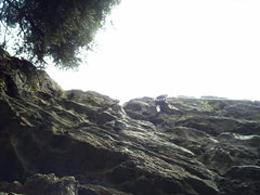 Rock Climbing Photo: Well done!!! Julie Mearckle enjoys the steep stuff...