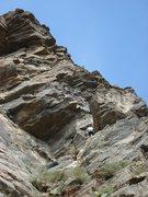 Rock Climbing Photo: Gus, Catslab, Clear Creek Canyon, Colorado.