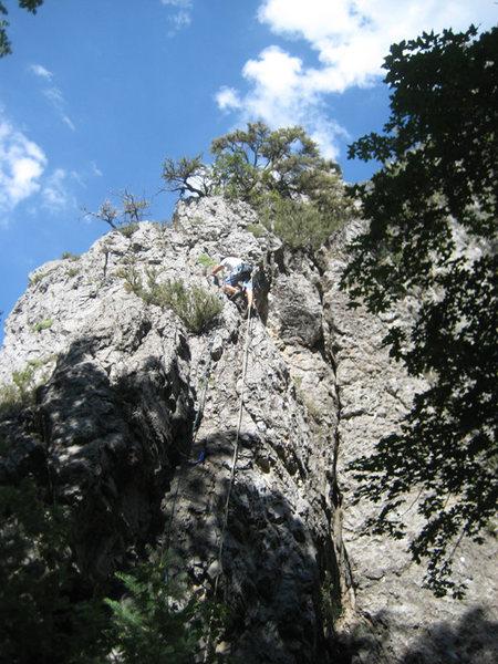 Rock Climbing Photo: Tristan Higbee on the FA of Antelope.