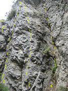 Rock Climbing Photo: The routes on the left side of The Wild 1) Gazelle...