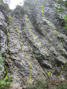 Rock Climbing Photo: The routes on the middle section of The Wild. 4) H...