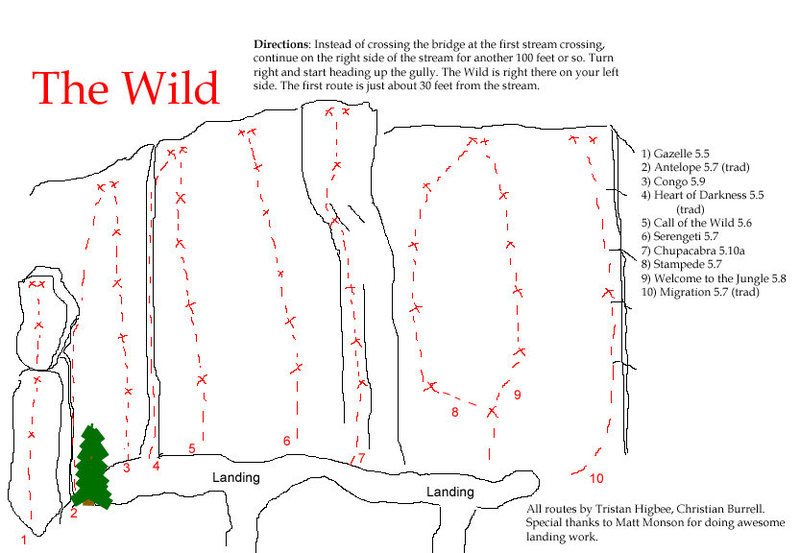 Rock Climbing Photo: Topo of The Wild for people to print out. Yes, it'...