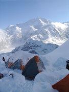 Rock Climbing Photo: View of Denali from Camp 1