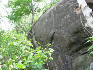 Rock Climbing Photo: Tree Boulder from the right.