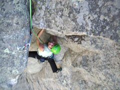 Bee stemming into the roof, Pitch 4.  Photo by Craig Quincy.