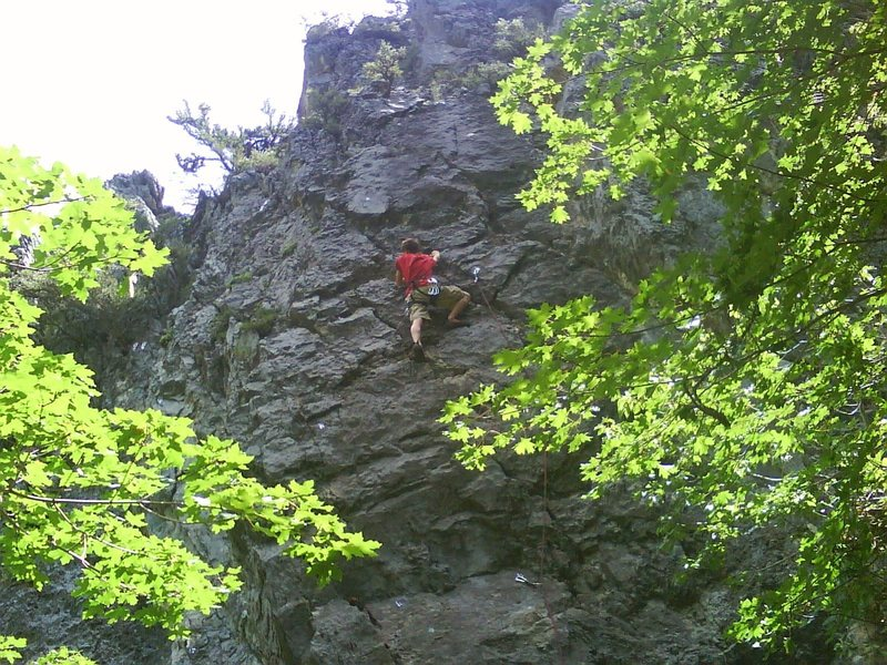 Welcome to the jungle; Steven Stout, age 15, first outdoor, onsight lead.