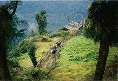 Rock Climbing Photo: Arriving at the Bakhim trekkers' hut.