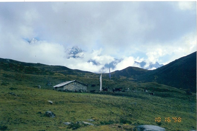 A high-country yak herder's hut.