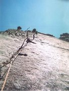 Rock Climbing Photo: George's Tree, this was my first trad lead, many r...