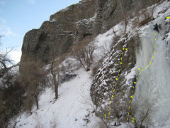 Rock Climbing Photo: Pipe Dream Wall (AKA Kitty Litter Wall), left side...
