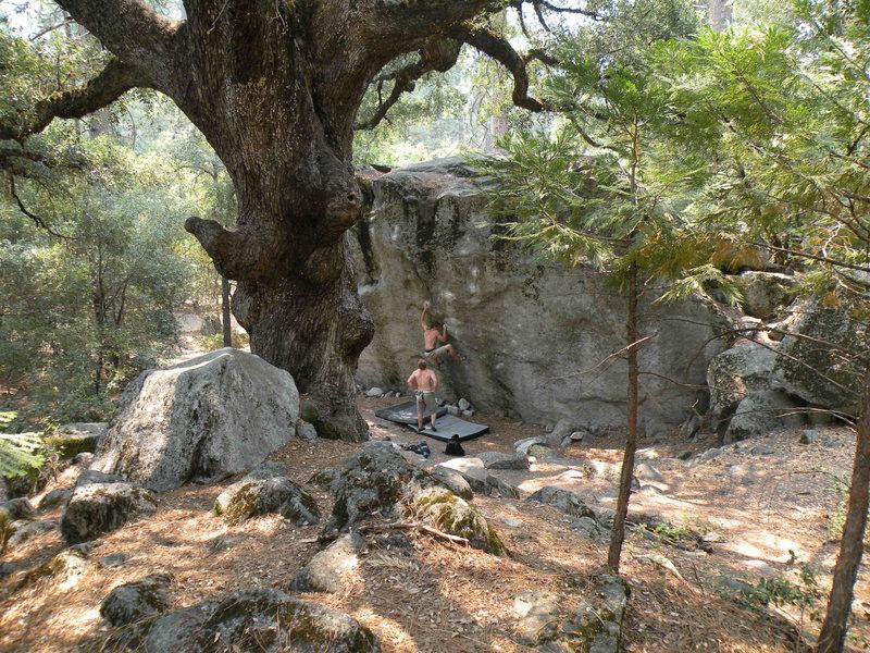Rock Climbing Photo: Thriller
