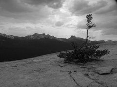 Rock Climbing Photo: The top of Lembert dome