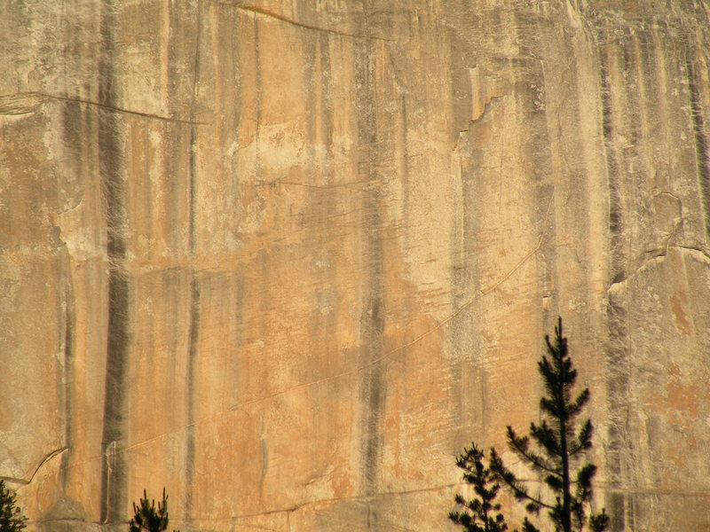 A golden granite face