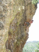 Rock Climbing Photo: Vince Bates nearing the final moves of the George ...