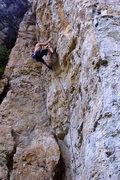 Rock Climbing Photo: Legend of T Photo by Tara Reed