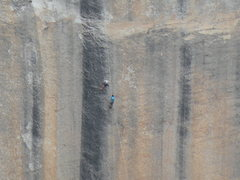 Rock Climbing Photo: A rescue(I think) going down on Bacher-Yerian
