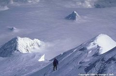 Rock Climbing Photo: Like a shark fin, the summit of Mt. Huntington pok...