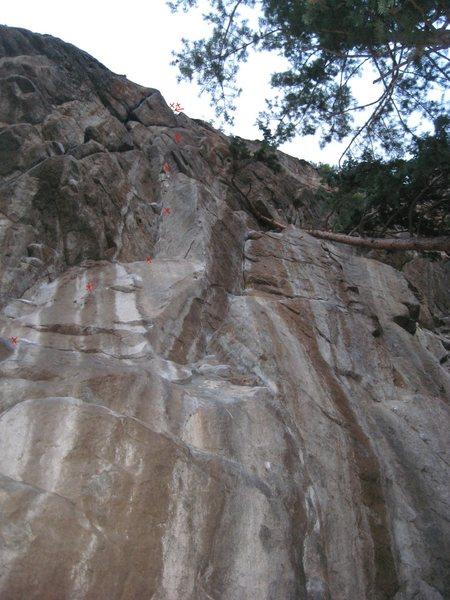 Rock Climbing Photo: This is the Riddler. Just left of the Joker. It is...