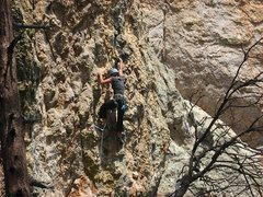 Rock Climbing Photo: Chelsea Cook on the redpoint.