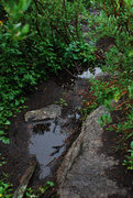 Rock Climbing Photo: Wet Main Trail--Area A
