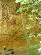 "Rock Climbing Photo: ""Chia Pet"" .12b at the Pipeline in Maple..."