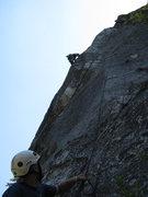 Rock Climbing Photo: Accessory Dogs
