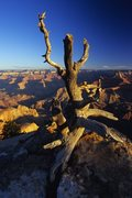Rock Climbing Photo: Grand Canyon sunrise