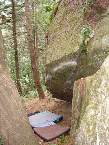 Rock Climbing Photo: Steep.
