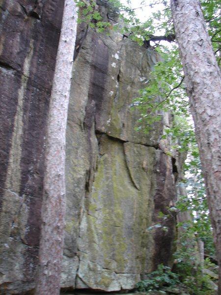 Crack between trees, steep.
