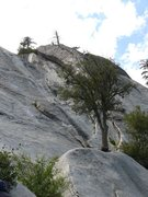 Rock Climbing Photo: Roughly the line of Serpentine is from slightly le...