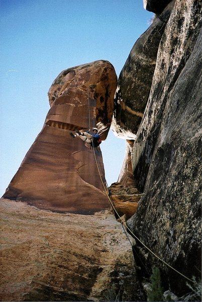 Rock Climbing Photo: Downward bound