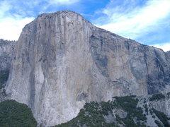 Rock Climbing Photo: El Cap.  Really.