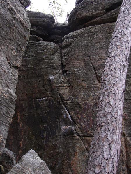 Rock Climbing Photo: Can't hang.