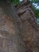 Rock Climbing Photo: The Book