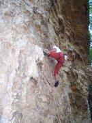 Rock Climbing Photo: Steve low on Chomping the Bit.