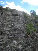 Rock Climbing Photo: Cave Woman (5.3)
