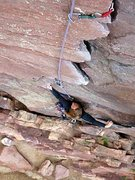 Rock Climbing Photo: Heather Sel on first pitch of Bastille Crack, Eldo...